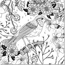Floral Designs Artists Coloring Book