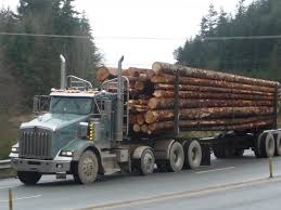 Logging Truck Delivery Truck With Logs Heavyhauling Pinterest The 1945 Intertional Logging Sierra Nevada Museum My Brakes Locked Up Logging Truck Driver At Cape Perpetua Hq 142 Hdx For Spin Tires Update Rolls Over On Ashby Road Kenworth 849 Pre Load Ta Trailer Forestech A Log Loader Or Forestry Machine Loads At Site 1949 Diamond T 2014 Antique Show Put O Flickr 16th Bruder Mack Granite Knuckleboom Grapple Crane Charlotte County Man Suffers Minor Injuries In Wreck Harvester Mule Train Simulator 2 Android Apps Google Play