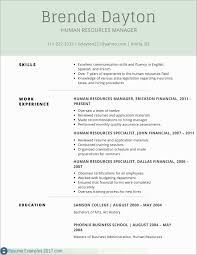 Summary For Resume Examples Entry Level Amazing Example
