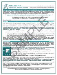Finance Resume Sample Executive CEO