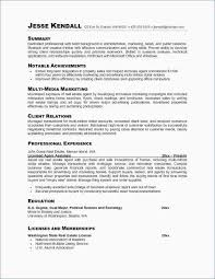 Sample Resume Education Professional Summary Examples