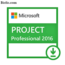 Microsoft Project Professional 2016 Crack Free Download Full Version