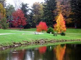 Autumn in the Toledo Botanical Garden – Man With the Muckrake