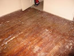 Does Steam Clean Hardwood Floors by 10 Things To Never Do To Hardwood Floors