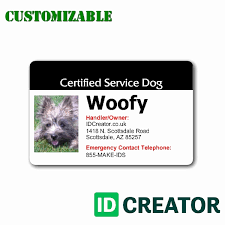 Emotional Dog Certification Simple Appealing Image Sample Emotional