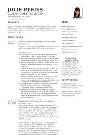 Vice President Of Marketing Inside Sales Resume Example