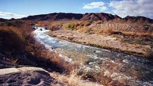 Tule Springs Fossil Beds National Monument by Chris Giunchigliani District E August Newsletter