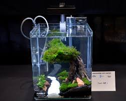 Aquascaping Live! 2016 Small Planted Tanks Aquascaping Aquarium Ideas From Aquatics Live 2012 Part 2 Youtube How To Make Trees In Planted Aquarium The Nature Style Planted Tank Awards Ultimate Shop In Raipur Fuckyeahaquascaping My 90p Tank One Month See Day 1 Here Best 25 Ideas On Pinterest Home Design Designs Aquascape Happy Journey By Adil Chaouki 1ft Cube Aquascaping Fuck Yeah Anyone Do For Your Fish Srt Hellcat Forum Archives Javidecor
