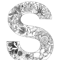 Animal And Plant Alphabet Letter S