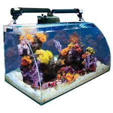 aquarium nano eau de mer nano aquarium wave box vision 60 marine avec vitre avant courbé