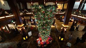 How Do You Feel About Upside Down Christmas Trees