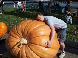 Worlds Heaviest Pumpkin In Kg by Dragonsfaerieselves U0026theunseen Largest Pumpkins Of 2016