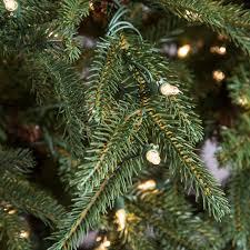 Downswept Douglas Fir Artificial Christmas Tree by National Tree Pre Lit 7 1 2 U0027 Feel Real Frasier Grande Hinged