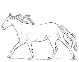 Coloring Page Horse Horses Pages Free Line Drawings