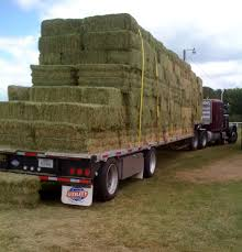 Hay Auctions Held In Sheboygan County | State News | Agupdate.com Kims County Line In Its Hday Small Hay Truck Stock Image Image Of Biological Agriculture 14280973 Truck Hauling On Farm With Family Help Men Riding Trailer Full With Bales Of Hay Straw Free Stock Photo Public Domain Pictures Hauling Bmt Members Gallery Click Here To View Our Members A Large Central Washington State Delivers Winter Crownline Beds Farm Source Sales Old Rusting Vintage Full Pumpkins And 2009 Dodge Feed Hydraulic Spike T S Feeder