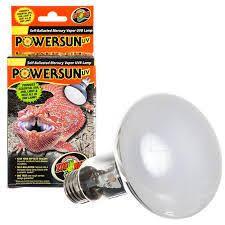 Bearded Dragon Heat Lamp Amazon by Zilla Night Black Heat Incandescent Bulb Petco Store Pet