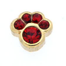 Clearly Charming Italian Charms July Ruby Color Gold Paw Print