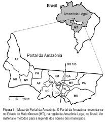 amazonia si e social social networks social capital and environmental governance in the