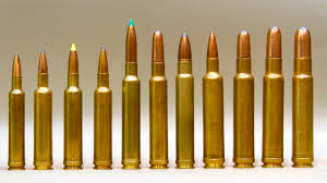 Shocking Bullet Performance - Ron Spomer Outdoors 30338 Win Need Help 24hourcampfire Review Barnes Vortx Ammo Field Stream 65284 Norma Best Allround Cartridge Ron Spomer Outdoors Africa And 20 Rds 110 Gr Tsx Bullets 223514 68 Remington Spc 7mm Magnum Ttsxbt 160 Grain Rounds Making My Way To Barnes Hunting Recovered From Moose 30 Cal 168 Ttsx Premium 300 Winchester For Sale 180 Tipped 31190bcs 223 Remington556 Nato Caja De Balas Cal 300wsm 150gr Bt Armeria Calatayud