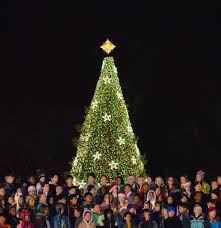 Chicago Christmas Tree Recycling by Lighting Christmas Tree Christmas Lights Decoration