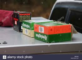 REMINGTON AND WINCHESTER SHELL BOXES ON TOP OF DOG KENNEL IN TRUCK ... Old School Alaskan Dog Box Fuelbox Offers Threeinone Convience Medium Duty Work Truck Bed Boxes Korrectkritterscom 2018 Titan Pickup Accsories Nissan Usa Looking Beds Ross Metal Works Dog Boxes Posts Facebook Tamikgordons On Twitter If You Have A Cap Your Truck This The Box Dimeions Biggahoundsmencom Buddy L Rival Food 1938140837 Products Ole Dry Pond Youtube