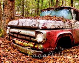 100 1957 Ford Truck In Trees Photograph Etsy