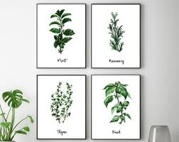 Herb Prints Wall Art Watercolor Herbs Poster Botanical Paintings Dining Room Decor Printable