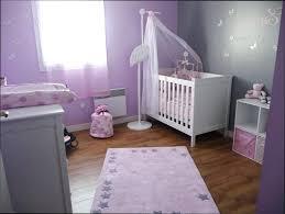 chambre bébé fille violet deco chambre bebe fille violet dacco bacbac mauve lzzy co