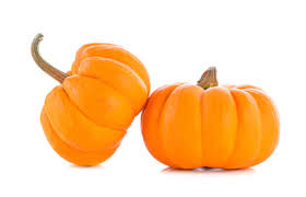 Bengtson Pumpkin Farm Lockport by Will County Fall Fest Pumpkin Farms Corn Mazes Hayrides