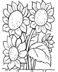 Awesome Sun Flower Coloring Page