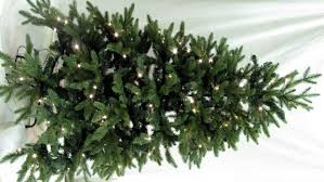 Christmas Tree Hill Shops York Pa by Artificial Christmas Trees Mini Unlit And Pre Lit Trees