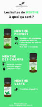 6th Edition Essential Oils Desk Reference Online by 1018 Best Huiles Essentielles Images On Pinterest Essential Oils