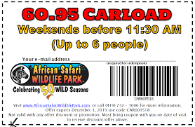Discounts | Admission Prices | African Safari Wildlife Park - Port ... Seat24 Rabatt Coupon Juli Corelle Dinnerware Black Friday Deals 5 Hacks For Scoring Cheaper Plane Tickets Wikibuy Airtickets Gr Coupon Plymouth Mn Goseekcom Hotel Discounts Deals And Special Offers Dolly Partons Stampede Coupons Discount Dixie How To Apply A Discount Or Access Code Your Order Eventbrite Promotional Boston Red Sox Tickets January 16 Off Selected Bookings Max Usd 150 For Travel 3 Reasons Be Opmistic About The Preds Season Cheapticketscom Re Your Is Waiting Milled 20 Off Promo Code Sale On Swoop Fares From 80 Cad Roundtrip Bookmyshow Rs300 Cashback Free Movie
