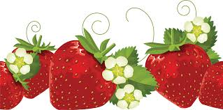 Free strawberry clipart 2