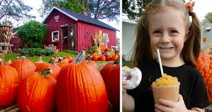 Michigan Pumpkin Patch Apple Orchard by Pumpkin Patches In The Toledo Area Interactive Map