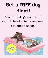 BarkBox Coupon: FREE Funboy Dog Float! - Hello Subscription Bark Box Coupons Arc Village Thrift Store Barkbox Ebarkshop Groupon 2014 Related Keywords Suggestions The Newly Leaked Secrets To Coupon Uncovered Barkbox That Touch Of Pit Shop Big Dees Tack Coupon Codes Coupons Mma Warehouse Barkbox Promo Codes Podcast 1 Online Sales For November 2019 Supersized 90s Throwback Electronic Dog Toy Bundle Cyber Monday Deal First Box For 5 Msa