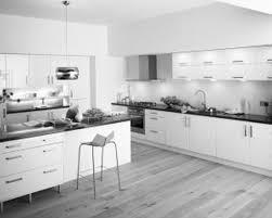 kitchen contemporary black white silver kitchen ideas grey