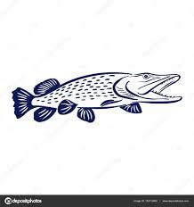 Imágenes La Pesca Artesanal Para Colorear Ilustración De Pescado