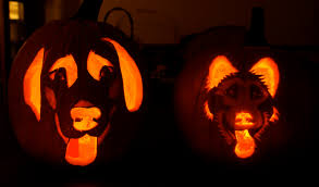 Good Pumpkin Carving Ideas Easy by Pumpkin Carving Sparkaliciouswit