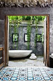 Plants For Bathrooms With No Light by Best 25 Bathroom Plants Ideas On Pinterest Plants In Bathroom