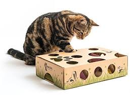 Cat Amazing Treat Maze & Puzzle Feeder Review Simply Pets
