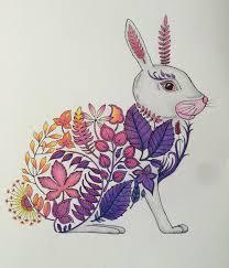 Enchanted Forest Johanna Basford Rabbit Pillow InspirationSecret BookColoring