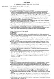 Program Manager Resume Objective Software Sample Senior Template ... Ten Things You Should Do In Manager Resume Invoice Form Program Objective Examples Project John Thewhyfactorco Sample Objectives Supervisor New It Sports Management Resume Objective Examples Komanmouldingsco Samples Cstruction Beautiful Floatingcityorg Management Cv Uk Assignment Format Audit Free The Steps Need For Putting Information Healthcare Career Tips For Project Manager
