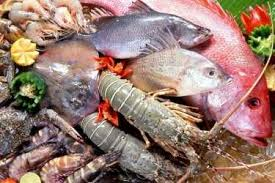 Cuban Seafood Exports To Reach 70 Million USD This Year