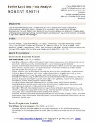 Senior Lead Business Analyst Resume Template