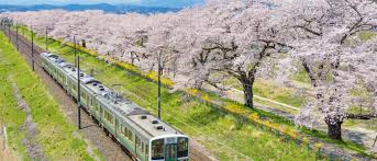 The Japan Rail Pass: Is It Worth The Cost? (Updated 2019 ... End Of The Rail Europe Brand Before Christmas Condemned As Edealsetccom Coupon Codes Coupons Promo Discounts Swiss Travel Pass Sleeper Trains In Here Are Best Cnn Jollychic Discount Coupon Bbq Guru Code Vouchers Discount For 2019 Best Travelocity Code Hotel Flight Mega Bus Codes Actual Ifixit Europe Dsw Coupons 2018 April Millennial Railcard Customers Wait Hours To Buy 2630 Train Solved All Those Problems With Sncf Websites And How Map