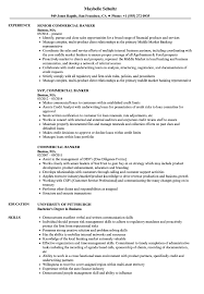 Download Commercial Banker Resume Sample As Image File