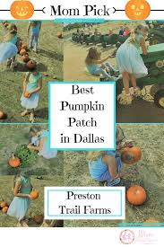 Pumpkin Patches Near Colorado Springs Co by Amazing Travels Near And Far Oh What Fun We Have