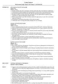 Relationship Manager Job Description Resumeount Summary Examples Account Resume Skills Objective Saleses Senior Technical Sales