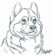 Husky Coloring Pages Revolutionary Com Amazing Learnfree Me Best Alaskan Cute To Print